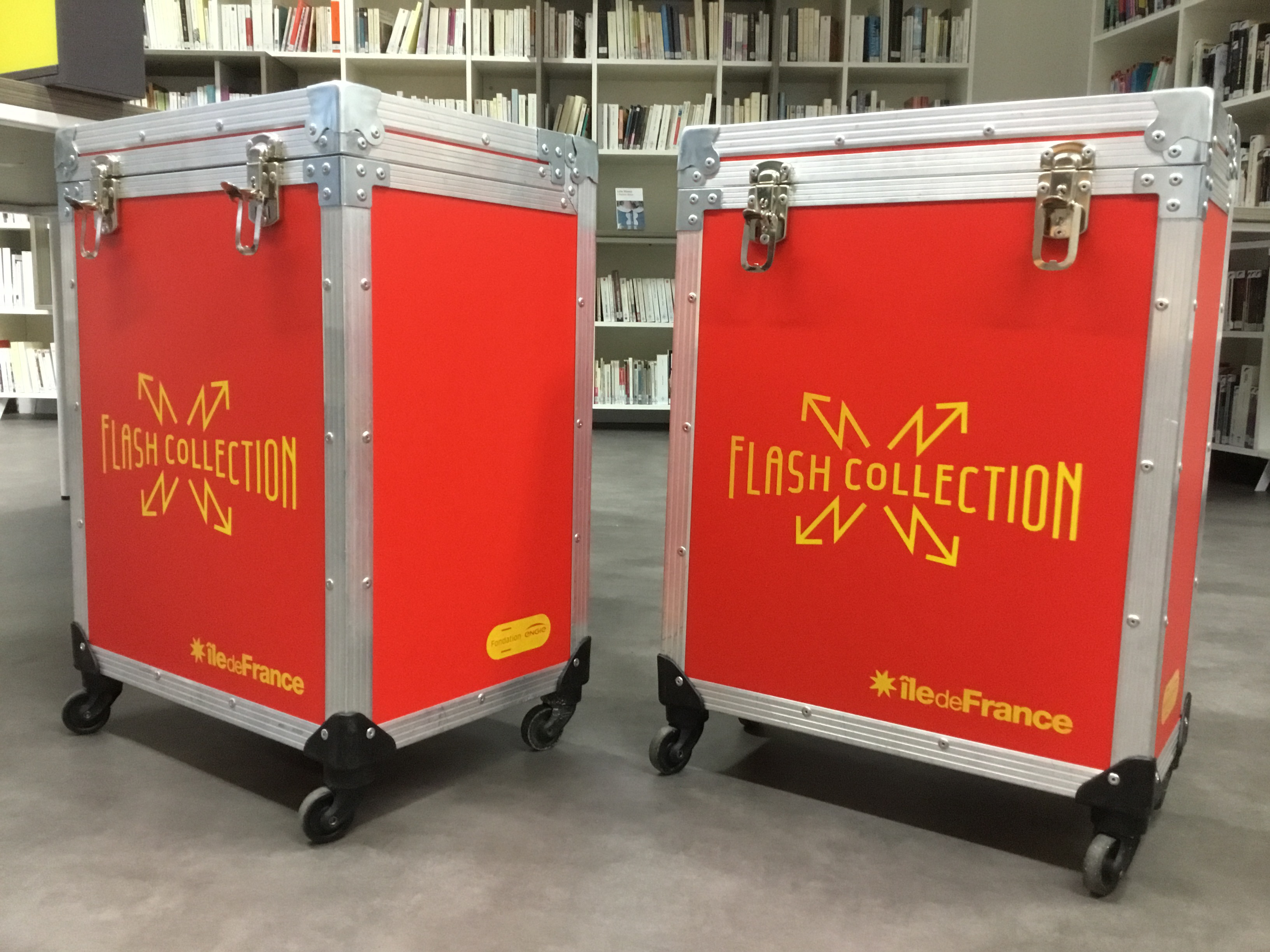 Visuel : Flash collection au CDI du lycée